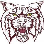 Fall Mountain Wildcats