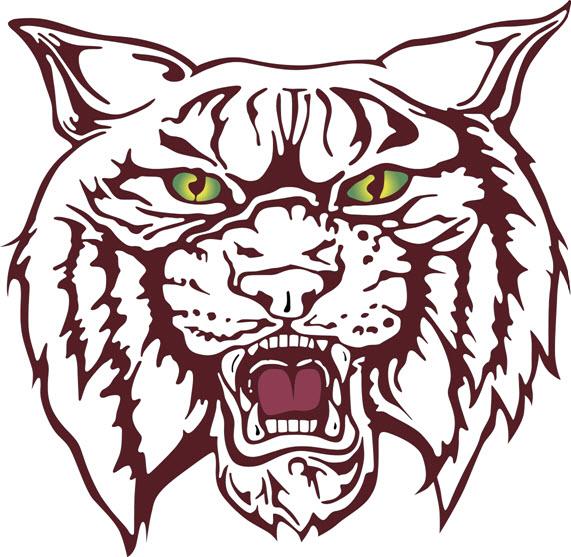 Wildcat Logo Large 1152